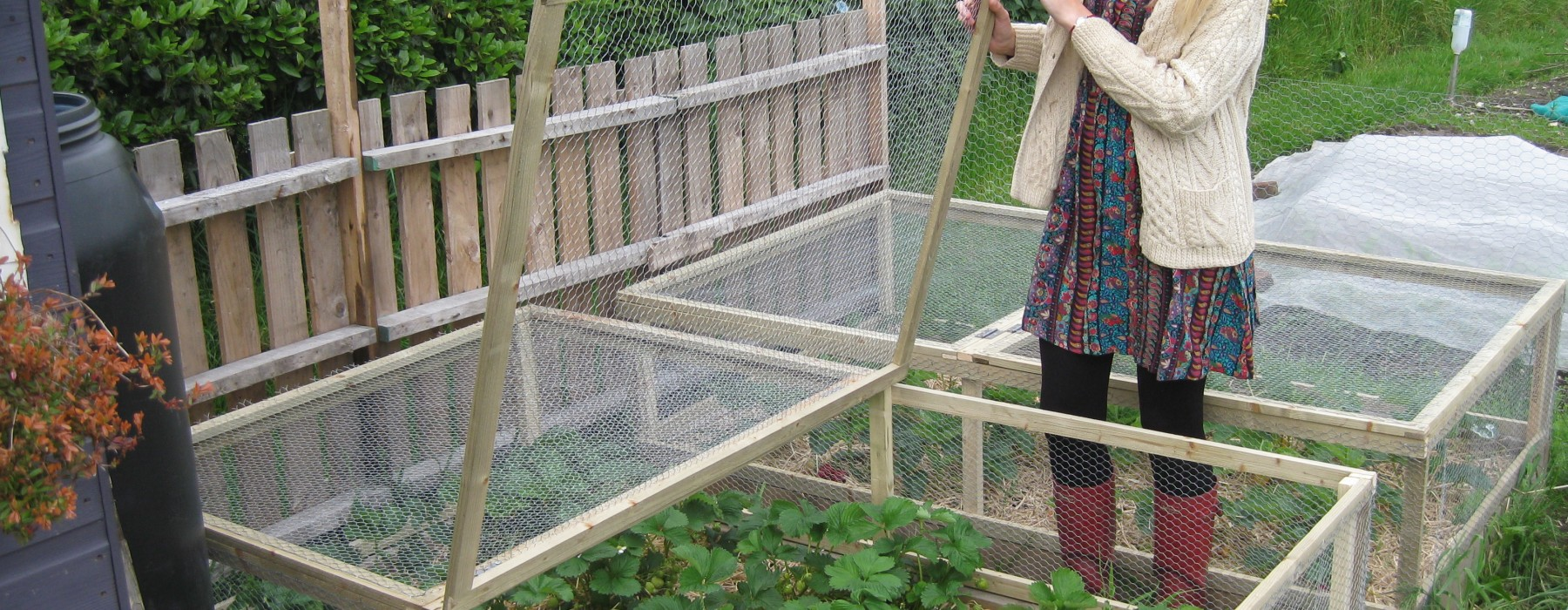 New Strawberry Bed Cages! | Lavender and Leeks | Lavender and Leeks