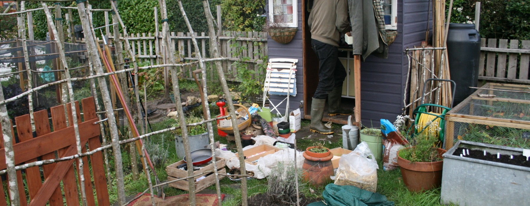 The Allotment Mouse
