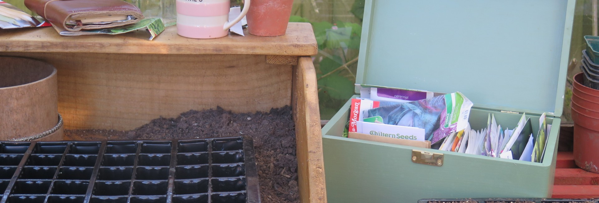 Good Morning Greenhouse!