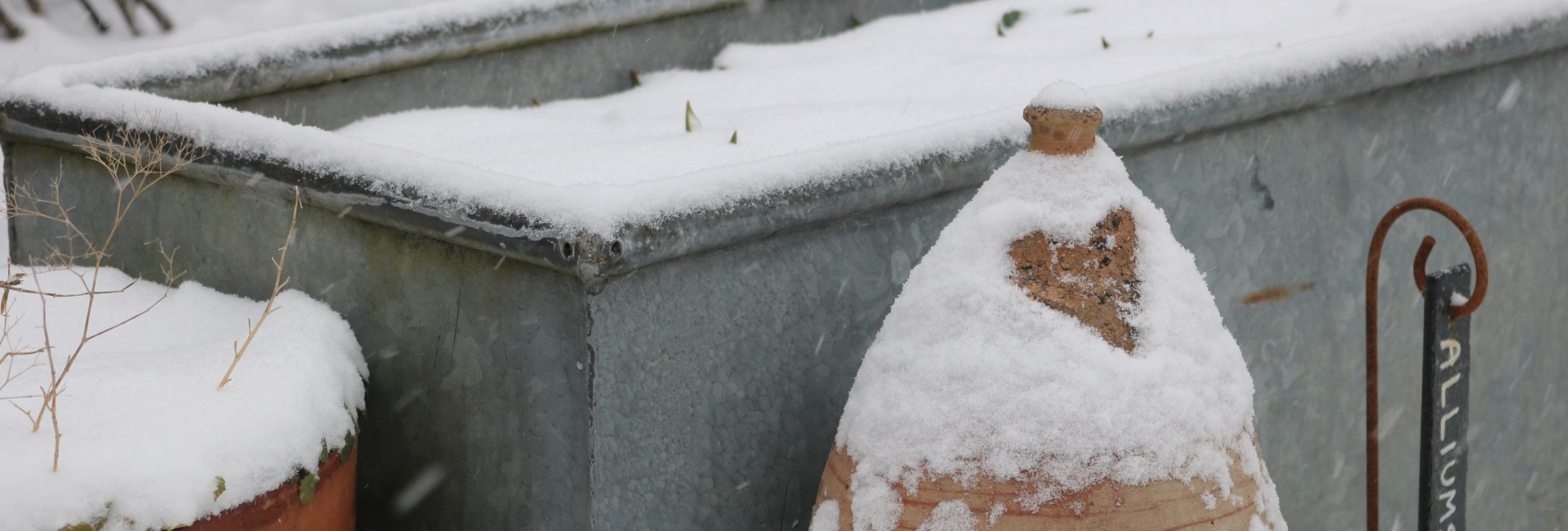 A Snowy Plot