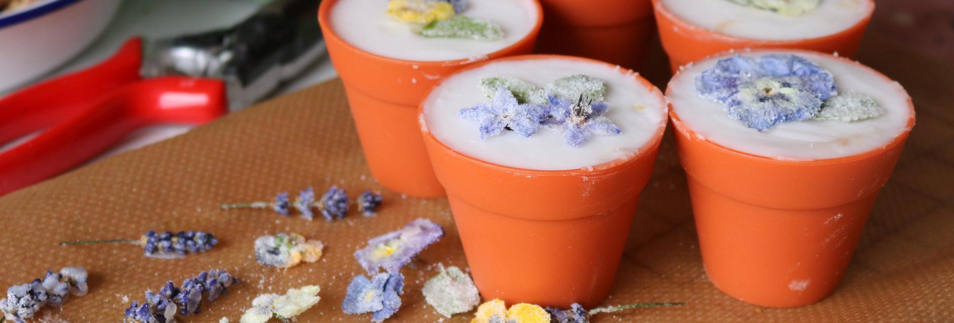 Crystallised Edible Flower Cupcakes