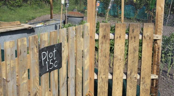 I name thee Plot 15C