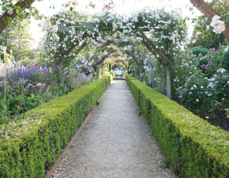 Obssessed with Mottisfont