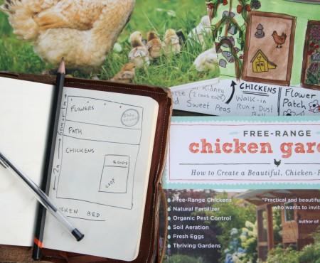 The Big Chicken Dilemma