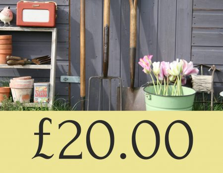 £20.00 Gift Voucher Coupon