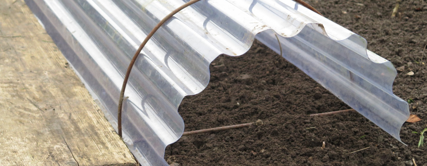 The Benefits of using Cloches