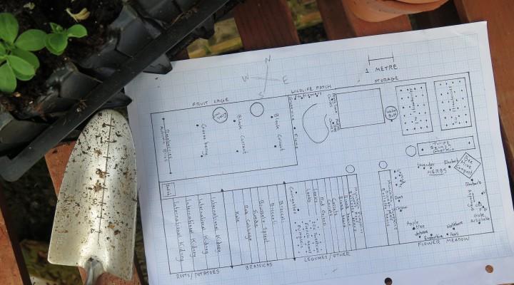 Planning Plot 15c 2016