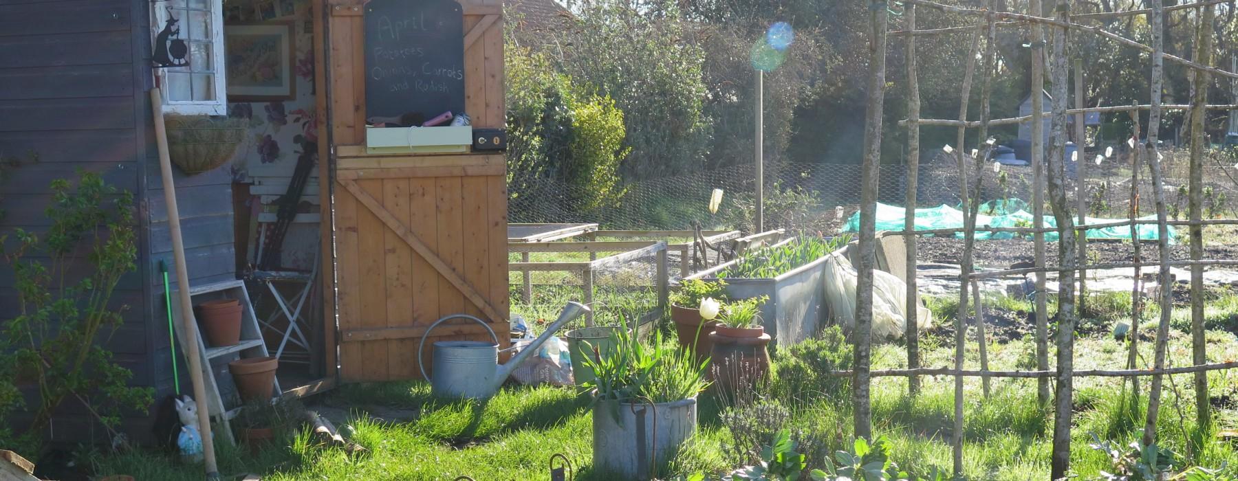 A Sunshiny Spring Day