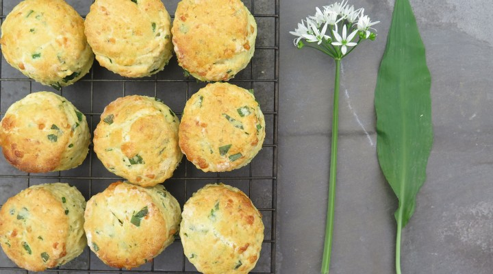 The Allotment Kitchen – Wild Garlic – Scones and Pesto