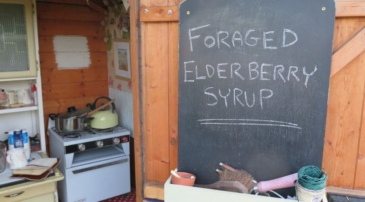 Foraged Elderberry Syrup