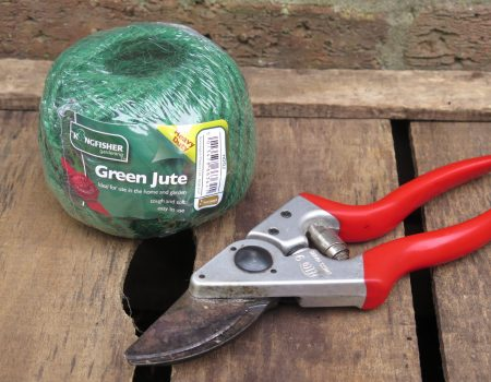 Green Twine