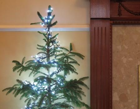 Cluster LED Lights – White