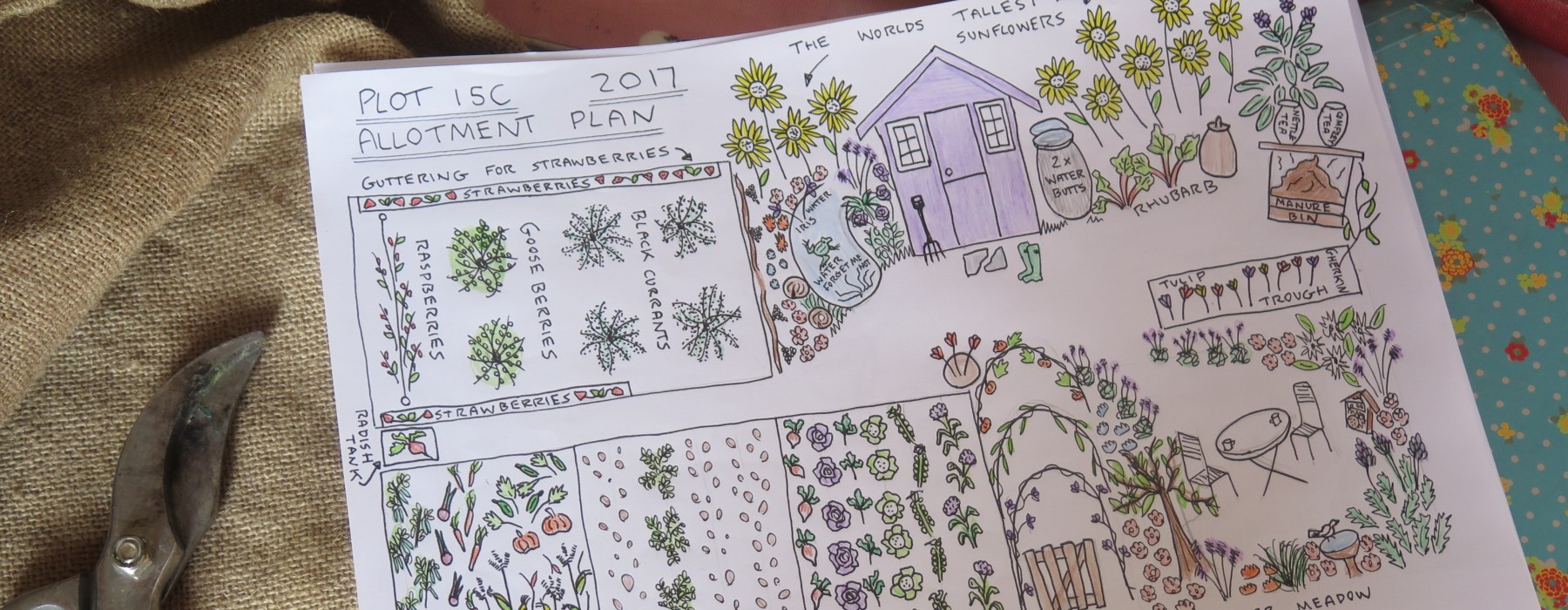 Plot 15c Plan 2017