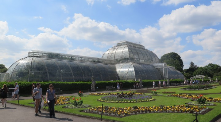 Adventures at Kew Gardens