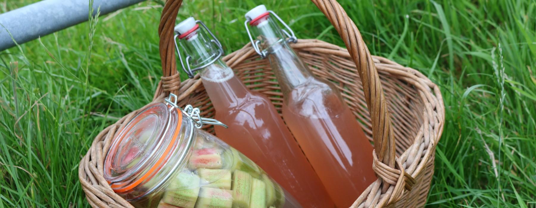 Rhubarb Gin and Rhubarb Cordial
