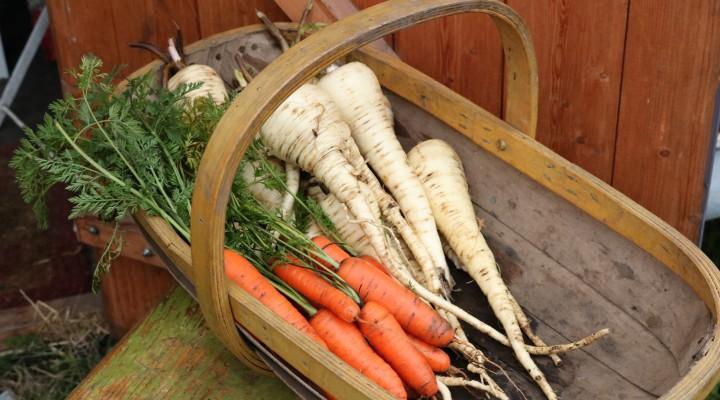 Christmas Dinner Harvest