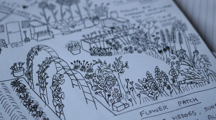 Plot 15c Plan 2018 – Flowers, Herbs and Wildlife