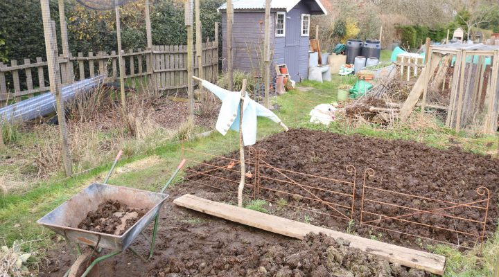 March 2018 – Tour of both Allotments