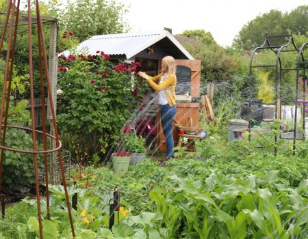 June 2018 – Sprinkler, Comfrey Fertiliser and Netting