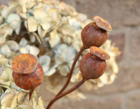 3 Small Metal Poppy Seed Heads