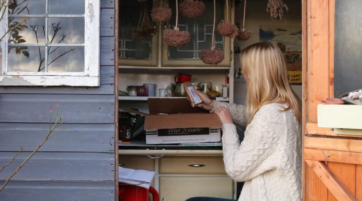 November 2018 – Spring Bulb Unboxing
