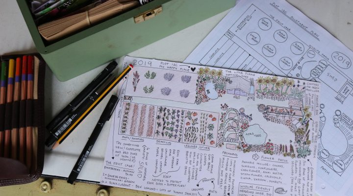 Allotment Plan 2019
