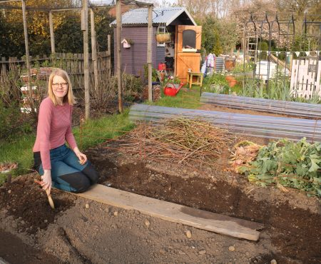 Potato Planting and Sowing Seeds