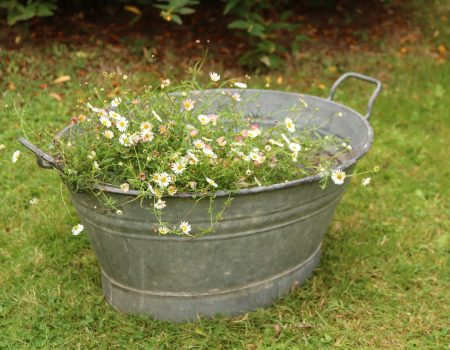 Small Galvanised Bath Tub #16