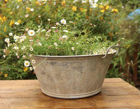 Galvanised Bowl #26