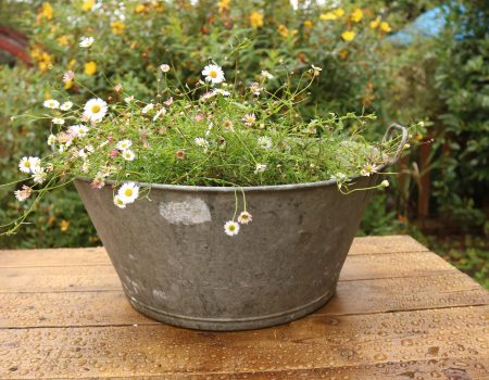 Galvanised Bowl #28