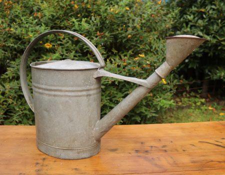 Galvanised Watering Can #1