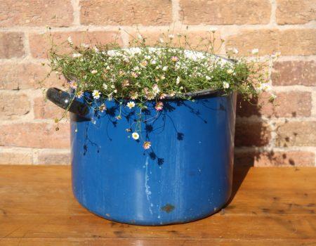Blue Enamel Tub #27
