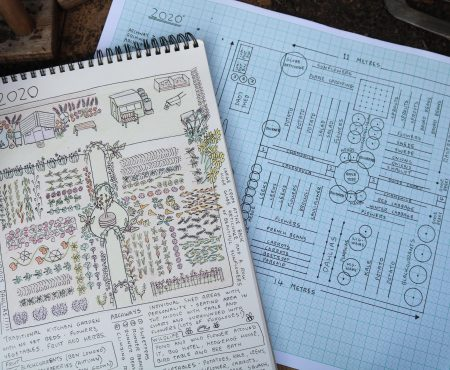 Allotment Plan 2020