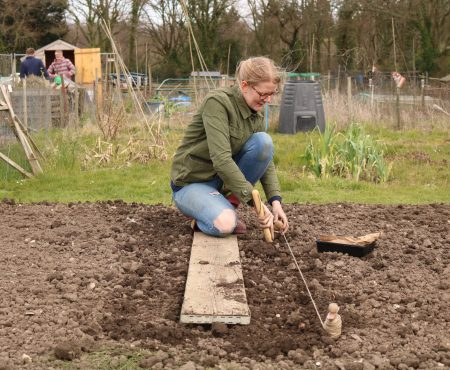 Potato Planting and Seed Sowing