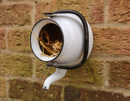 Teapot Bird House #4