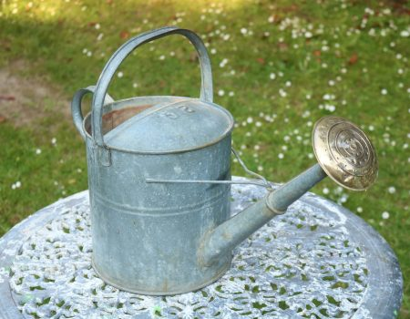 Watering Can #10