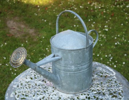 Watering Can #12