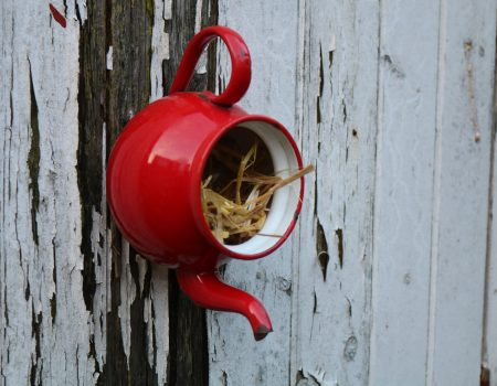 Enamel Teapot Bird House #2