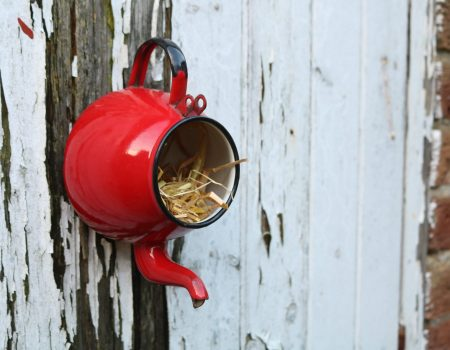 Enamel Teapot Bird House #3