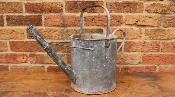 Watering Can Planter #4
