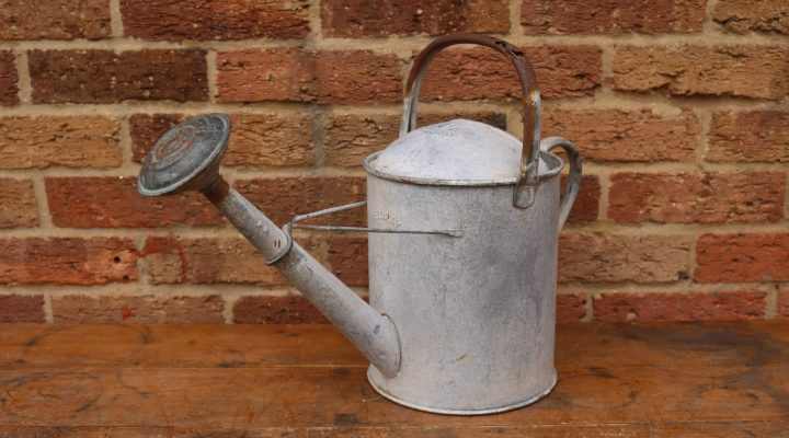 Watering Can #5