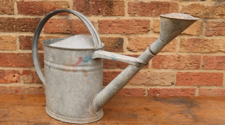 Watering Can #7